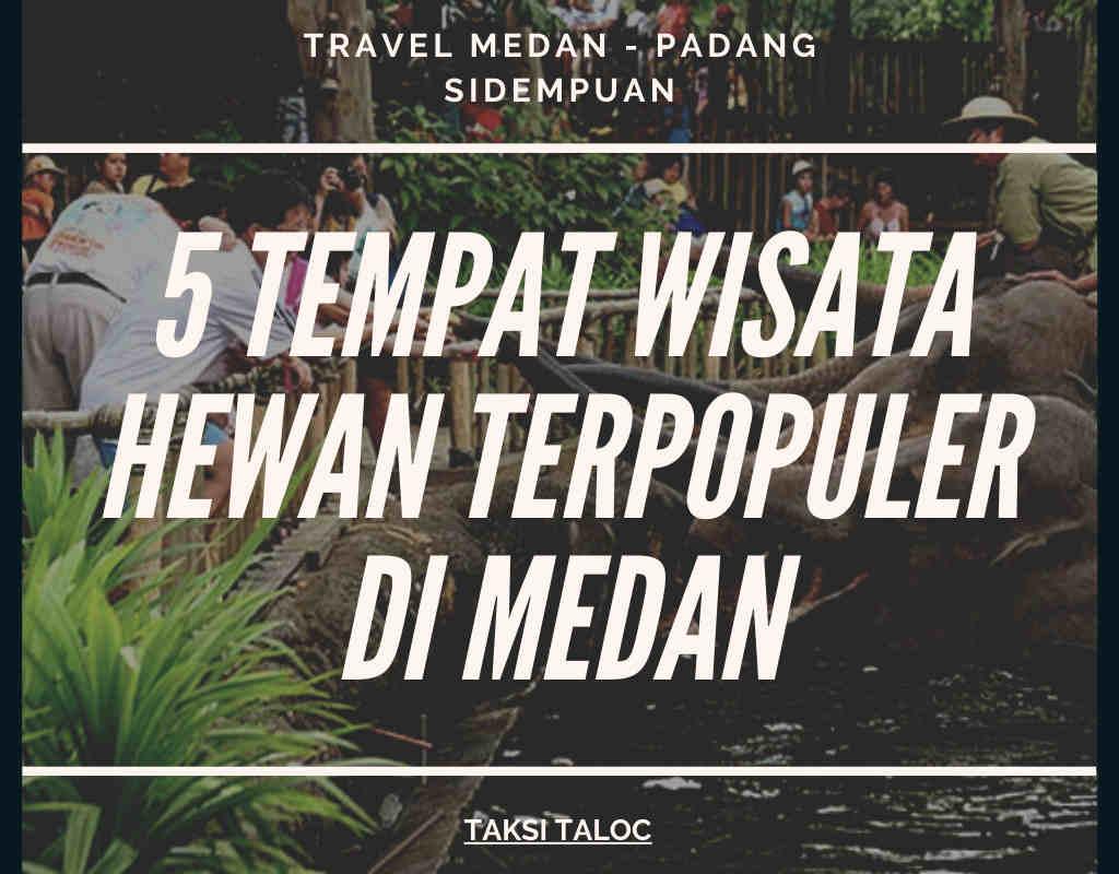 5 Tempat Wisata Hewan Terpopuler di Medan